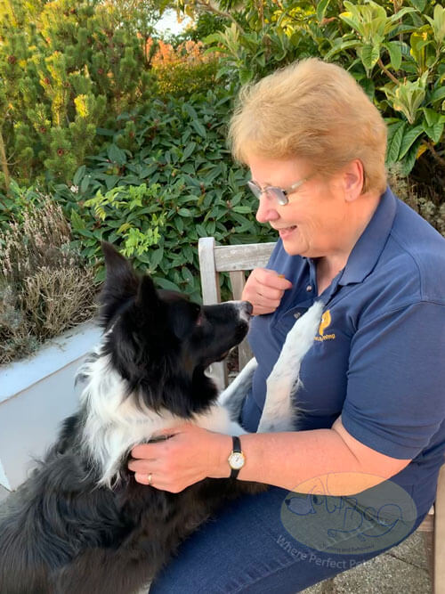 Carol looks down at her collie dog Gus